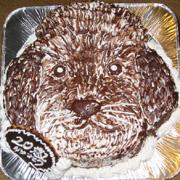 犬の顔型 立体ケーキ