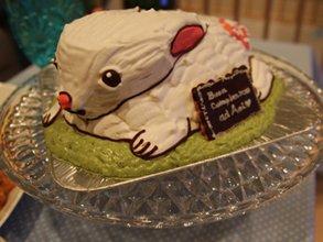 うさぎ 動物 立体 ケーキ