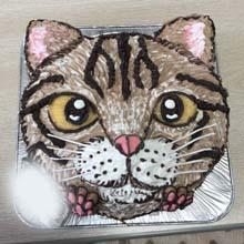 猫の顔型立体ケ−キ