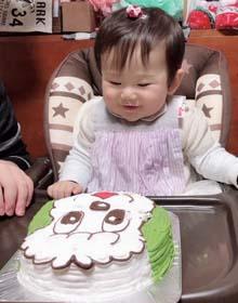 ワンワンの顔型立体ケーキ、スマッシュケーキ、1歳のお誕生日