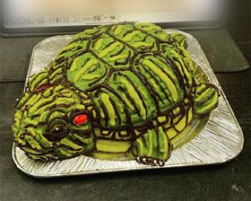 midori-came-3d-cake.jpg