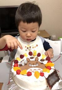 トトロのキャラケーキ