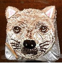 ペットの顔型立体ケーキ